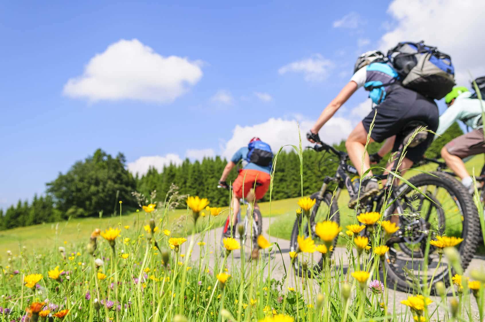 Fahrradfreunde finden