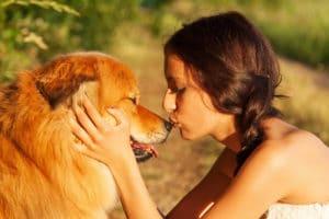 Freunde finden mit Hund Freunde finden im Alter